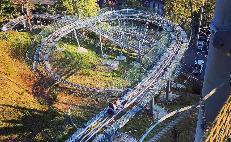 Rowdy Bear coaster Tennessee