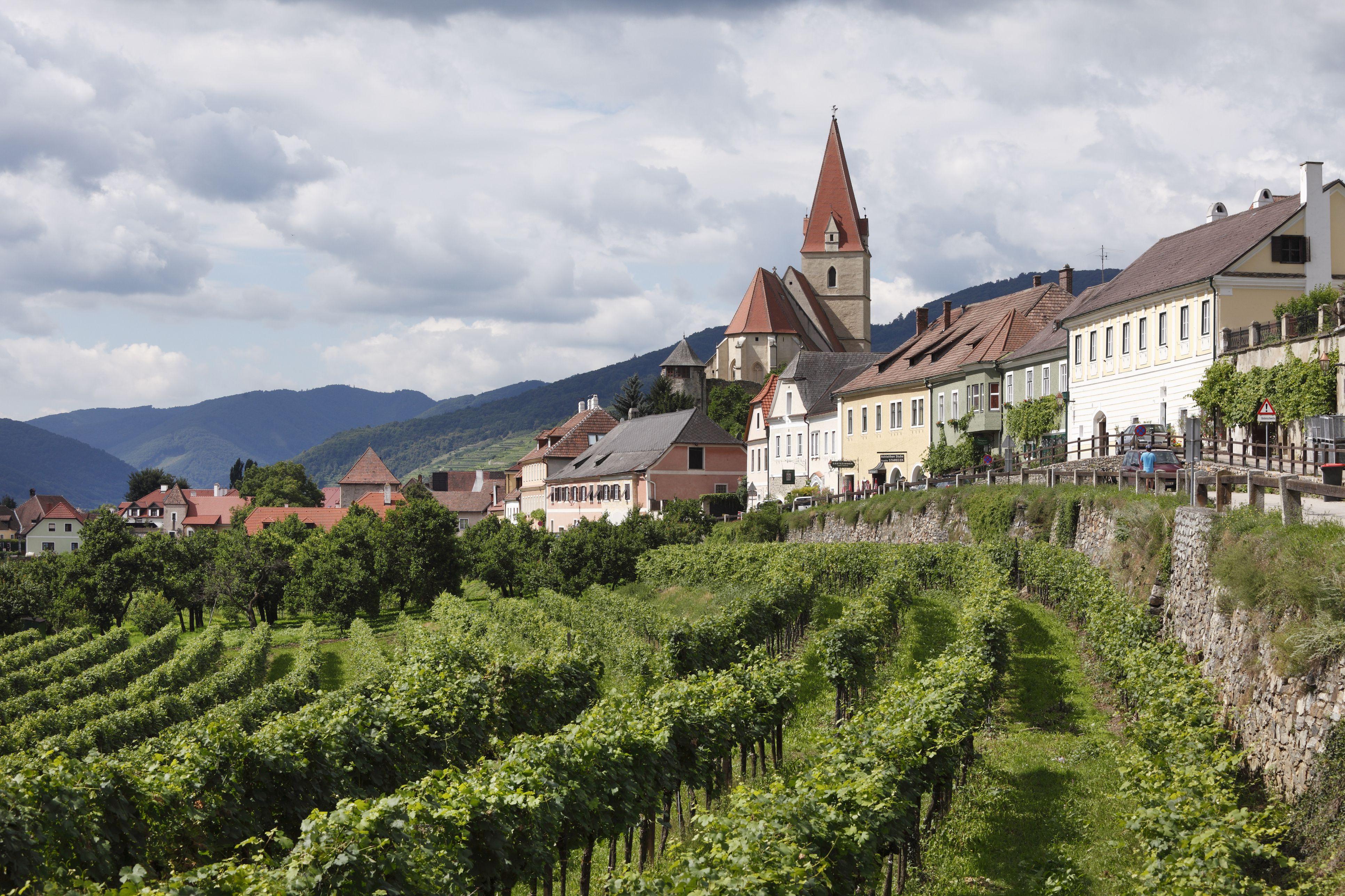 Weissenkirchen in the Wachau, Waldviertel, Lower Austria, Austria, Europe
