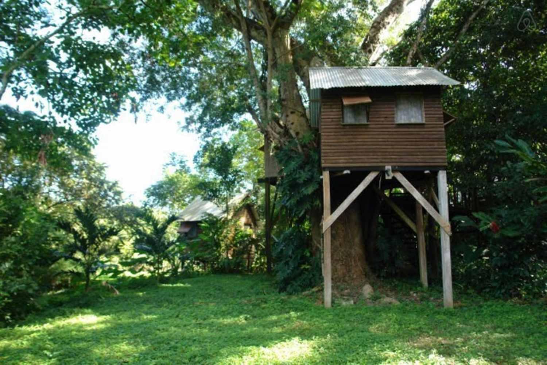 List Of Caribbean Treehouse Resorts