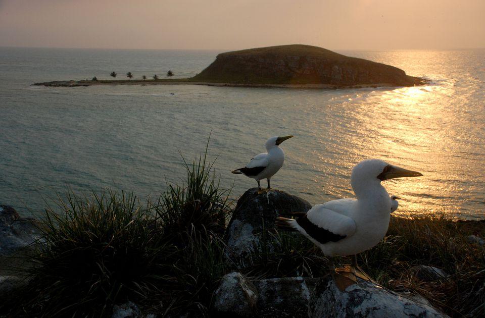 Abrolhos.jpg