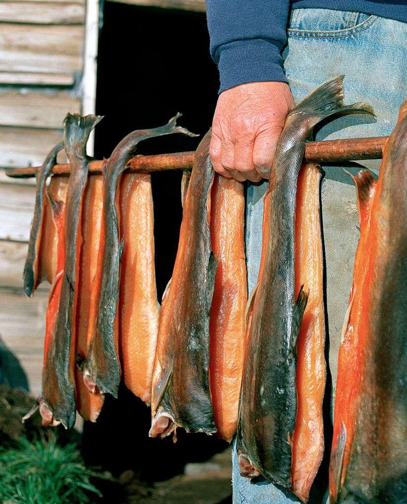 Iceland - Lake Myvatn - Farmer holding a pole of smoked salmon