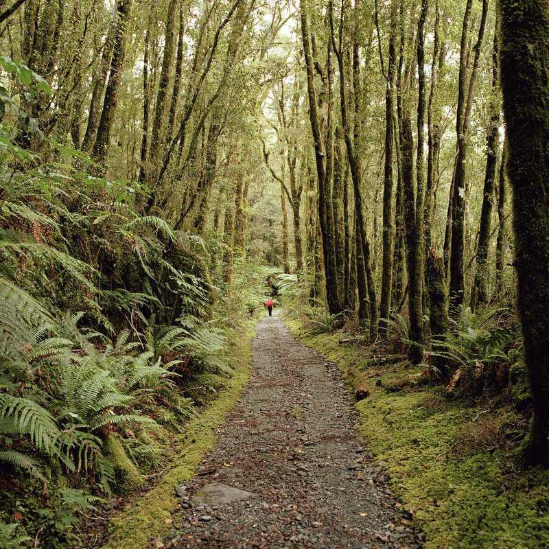 Milford Track, Parque Nacional de Fiordland