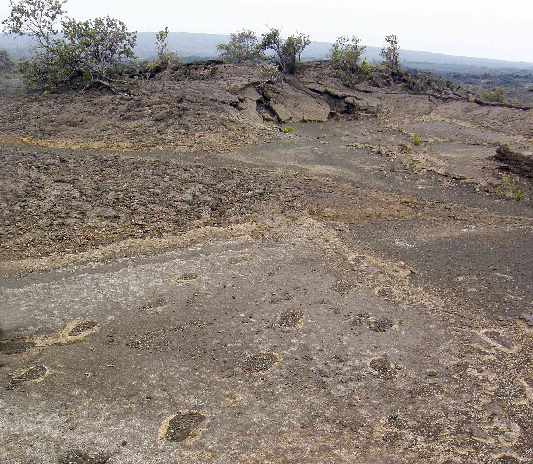 Footprints in the volcanic ash in Volcanoes National Park