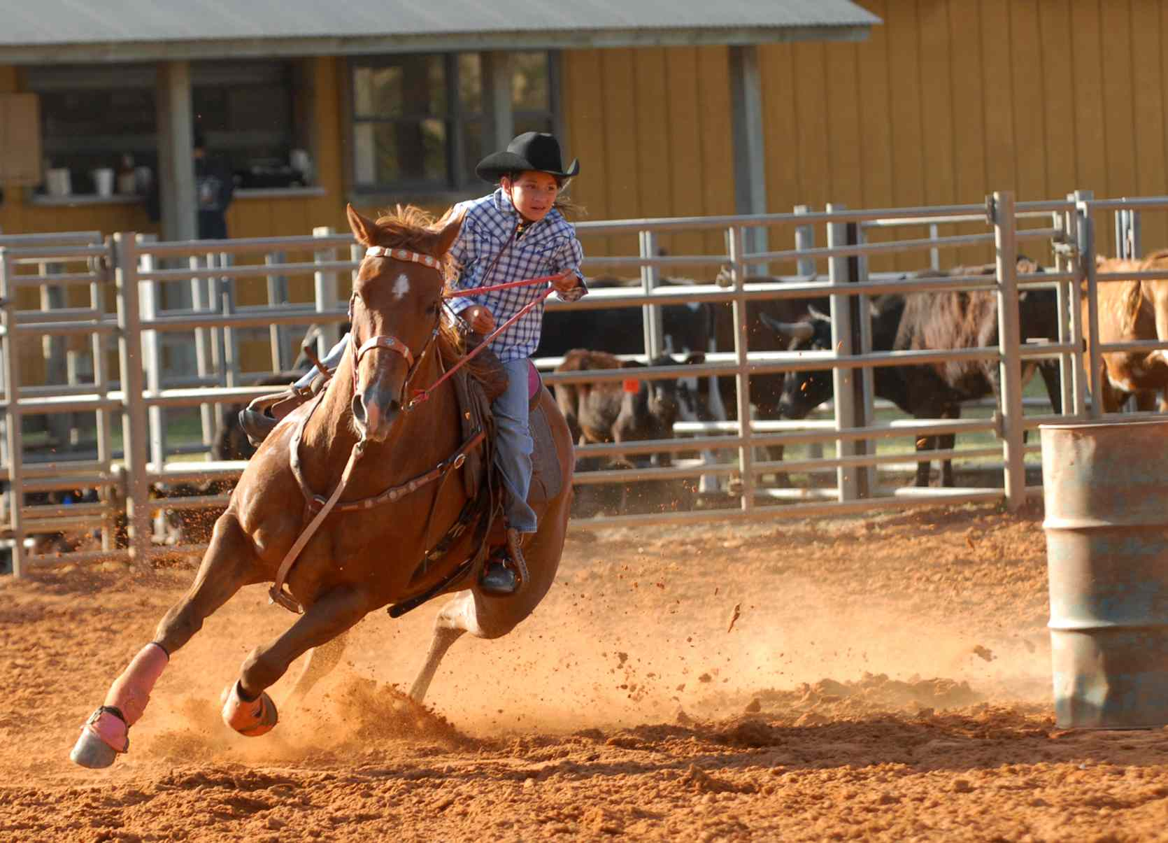 Cowgirl galloping in Texas Rodeo