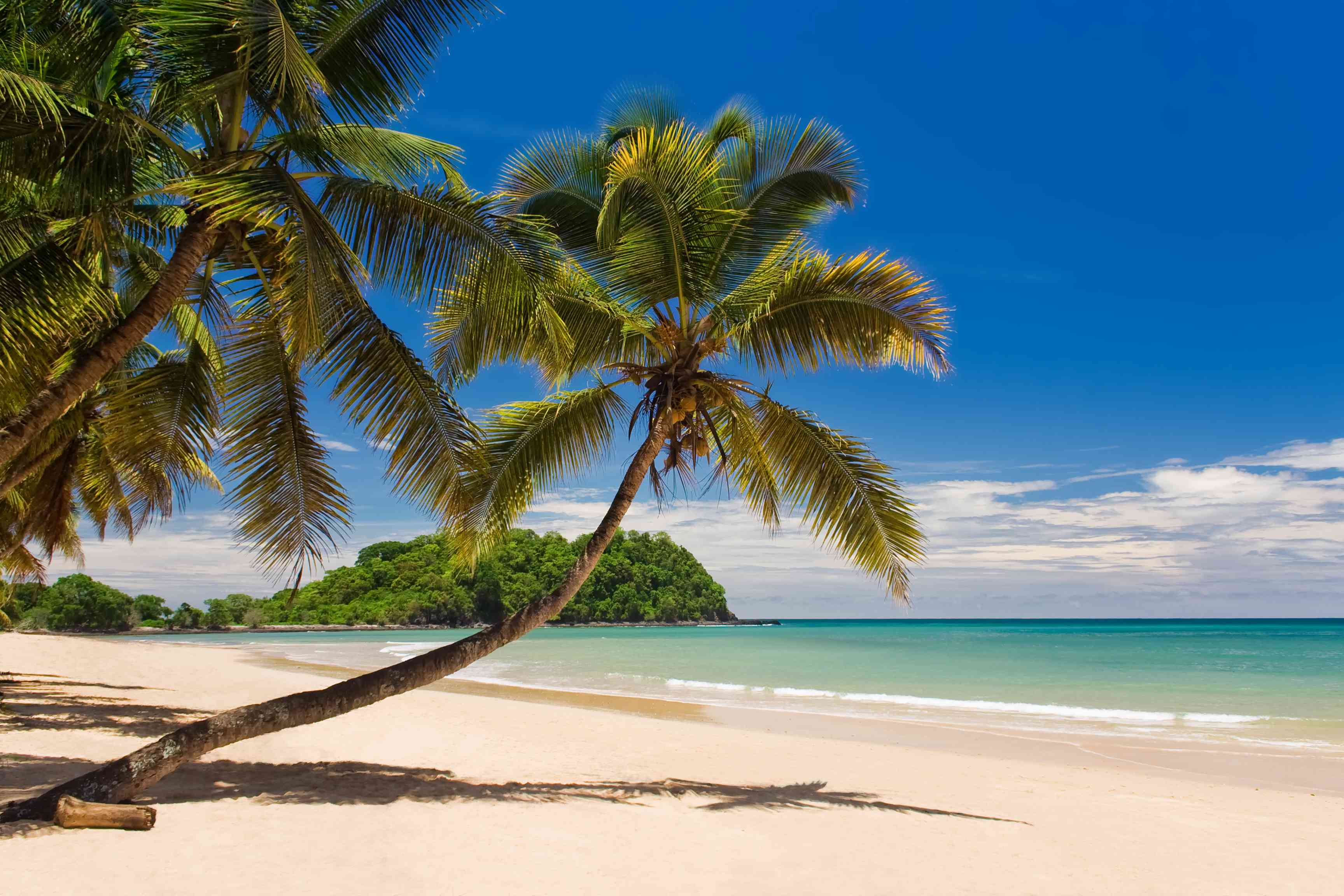 Tropical beach with palm trees on Nosy Be, Madagascar