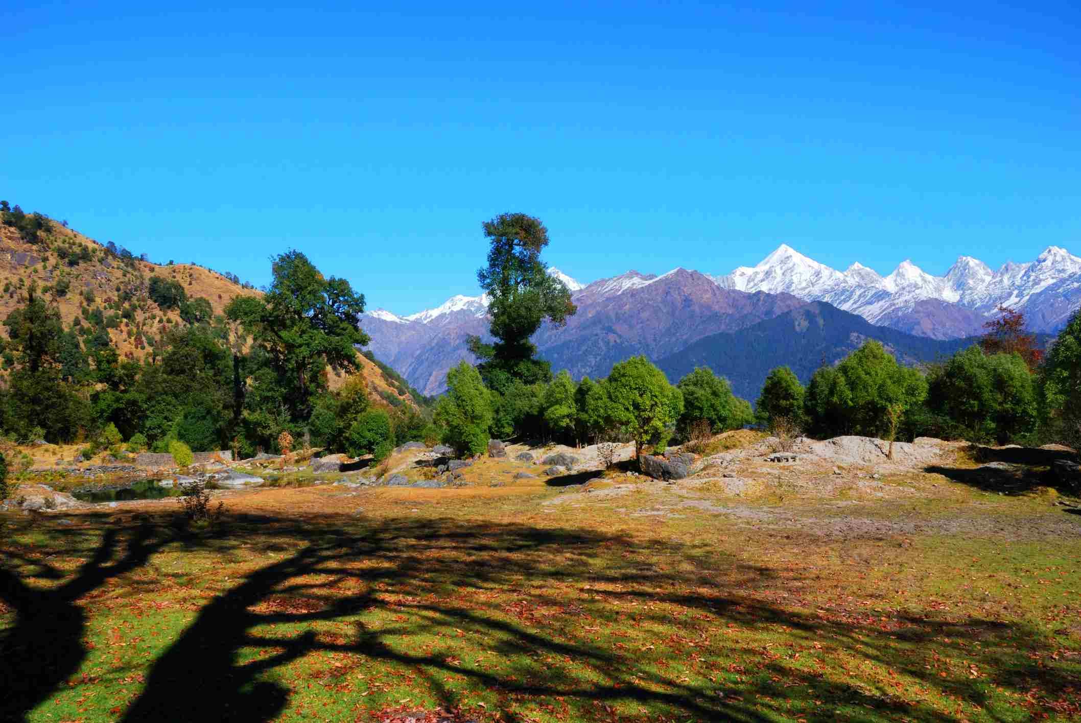 Munsiyari, Kumaon, Uttarakhand