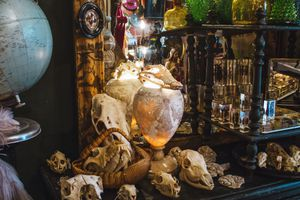 Table display of animal skulls in L'Object qui Parle