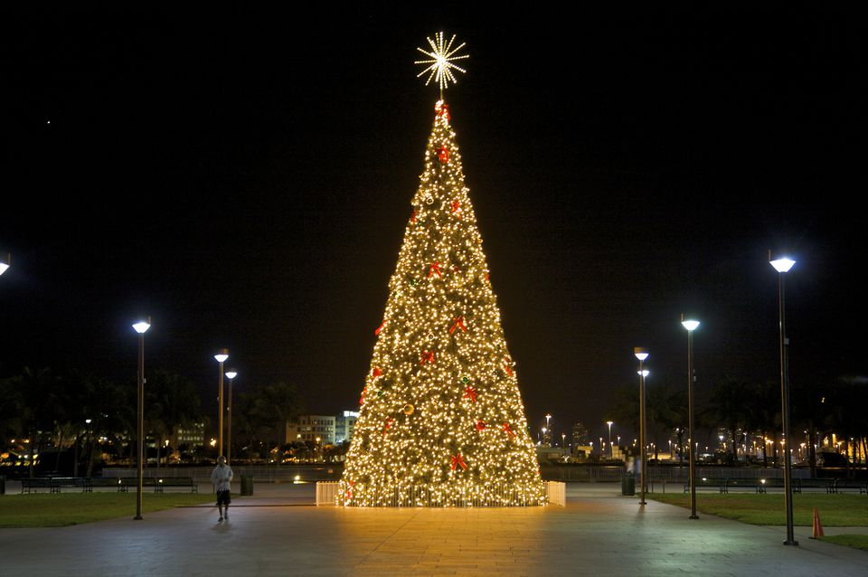a brilliantly lit christmas tree in bayfront park miami