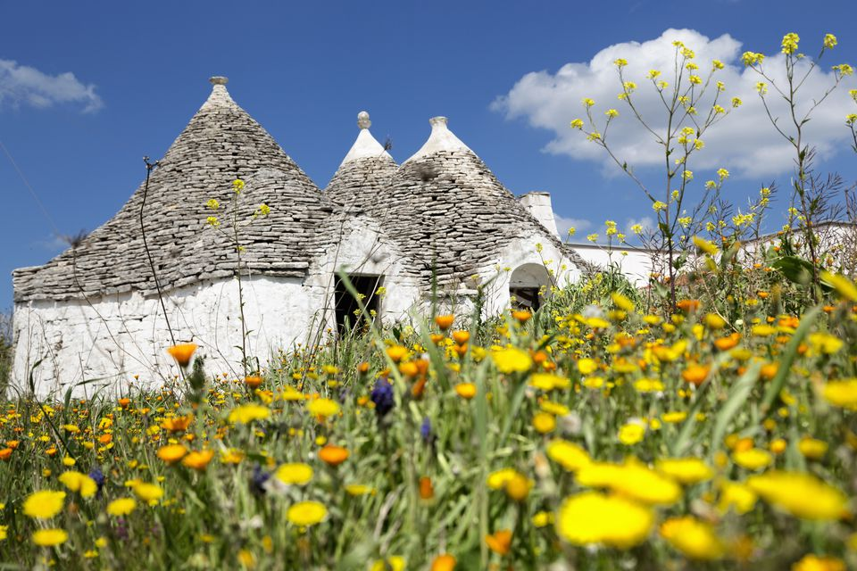 trulli in the countryside near Alberobello