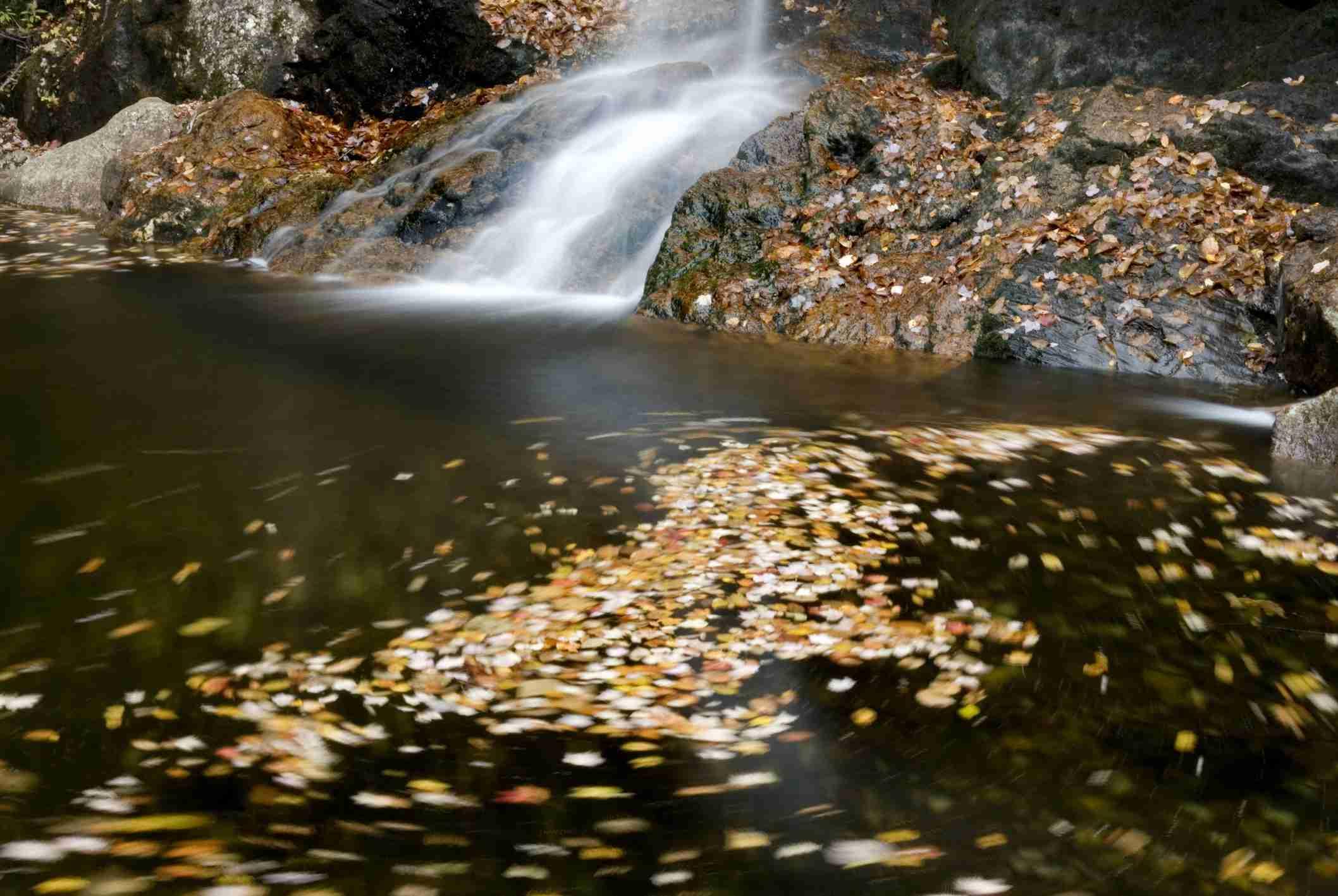 Thompson Falls. White Mountains. New Hampshire