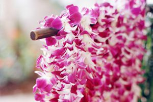 A stand of flower leis