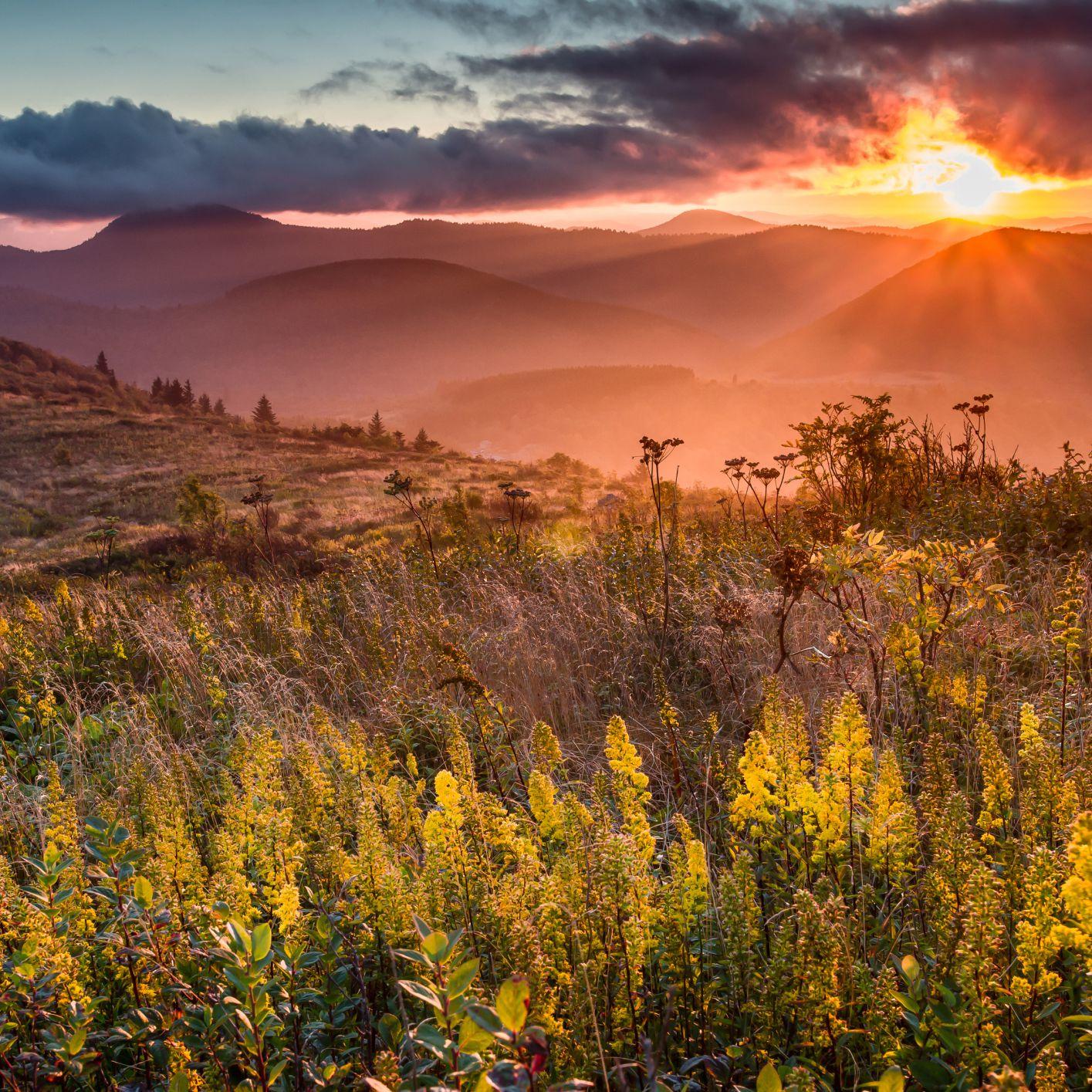 5 of the Best North Carolina RV Parks