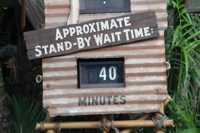 Disneyland wait time