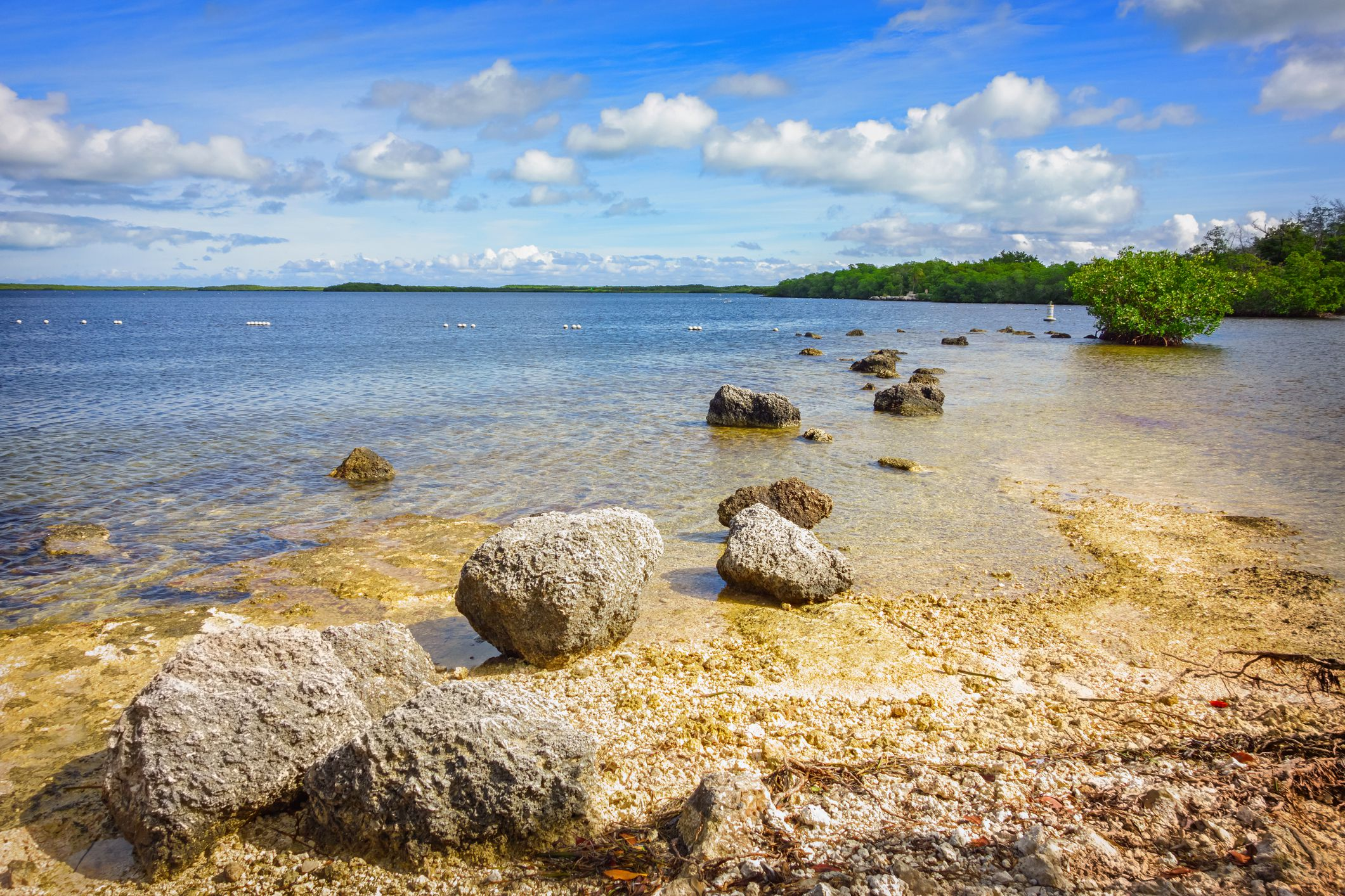 John Pennekamp Coral Reef State Park Key Largo Florida Keys