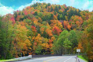 New England Fall Foliage Bus Trips