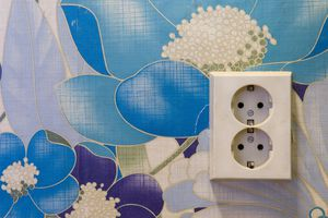 Europlug outlet and floral wallpaper