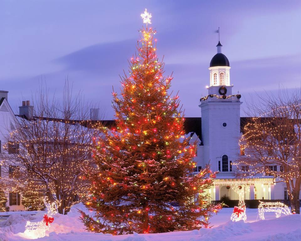 Winter Wonderland Hotels: 5 Gorgeous Resorts To Celebrate the Season