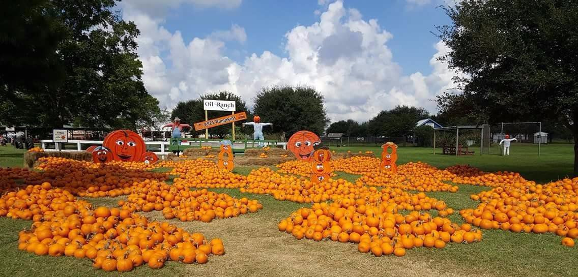 Pumpkin Patch and Scarecrow Festival