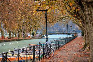Autumn leaves in Annecy, Auvergne-Rhône-Alpes, France