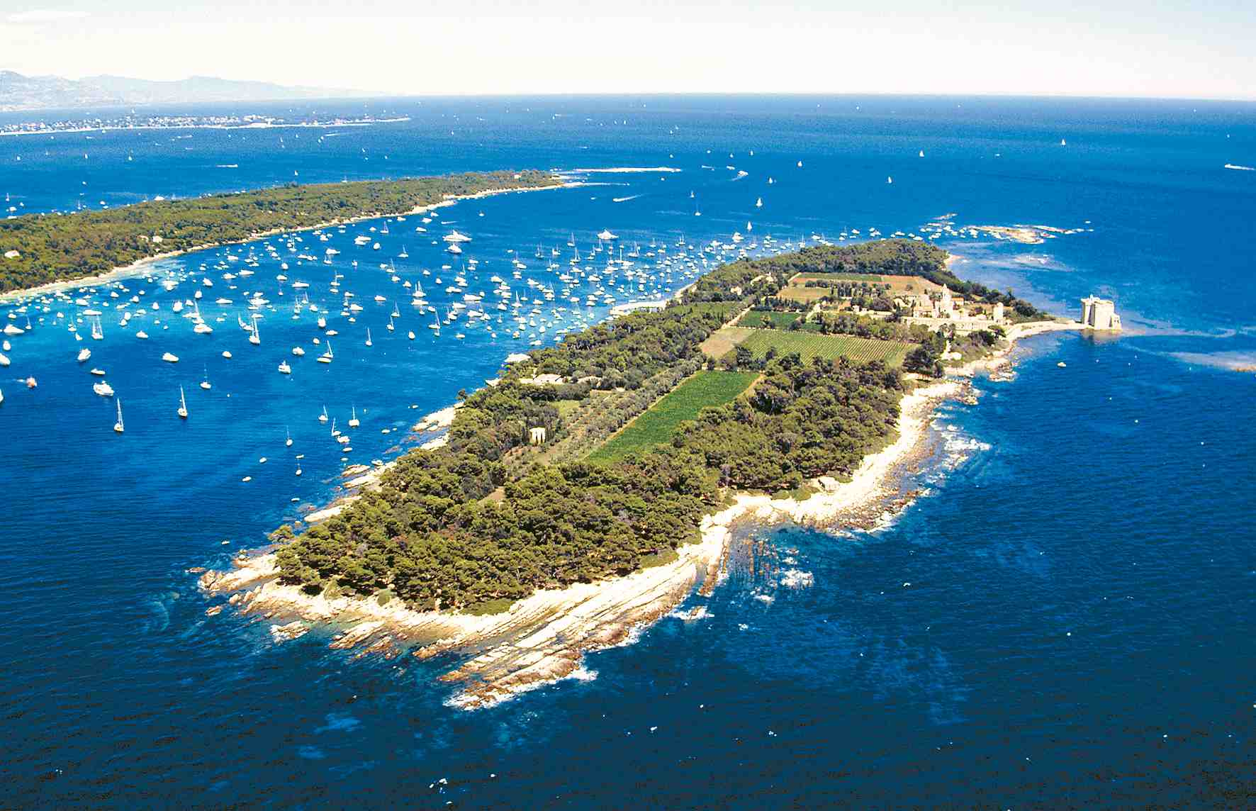 Ile-Saint-Honorat-aerial-view-1-Cannes.jpg
