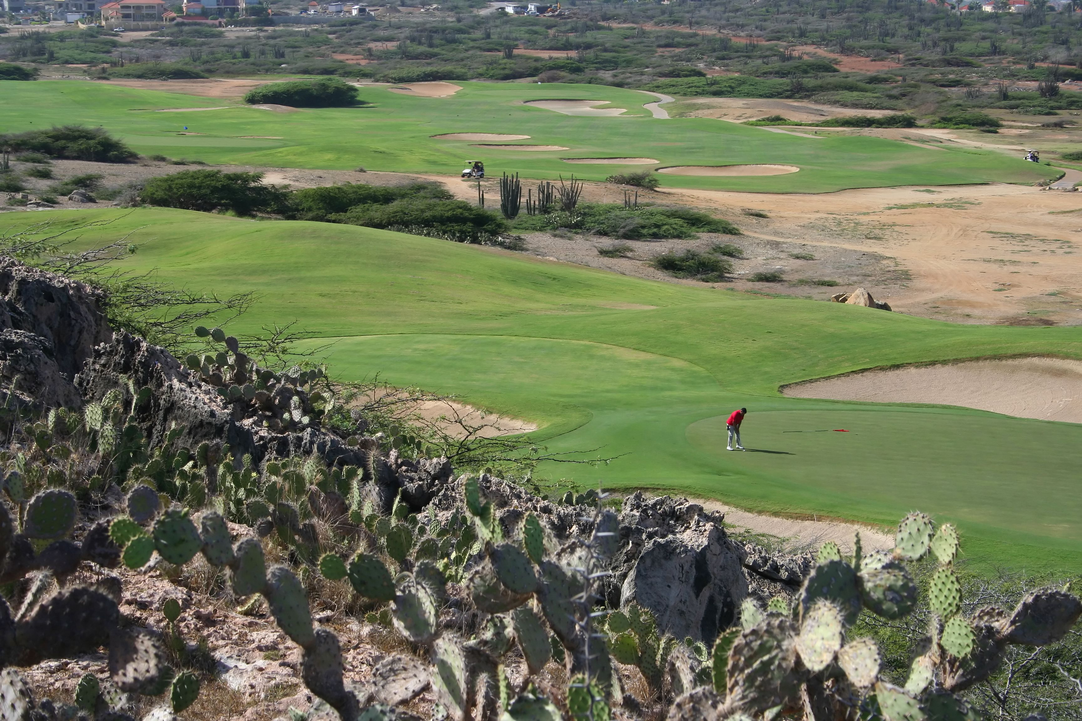 Golfer putting at the Golf Course at Tierra del Sol in Aruba