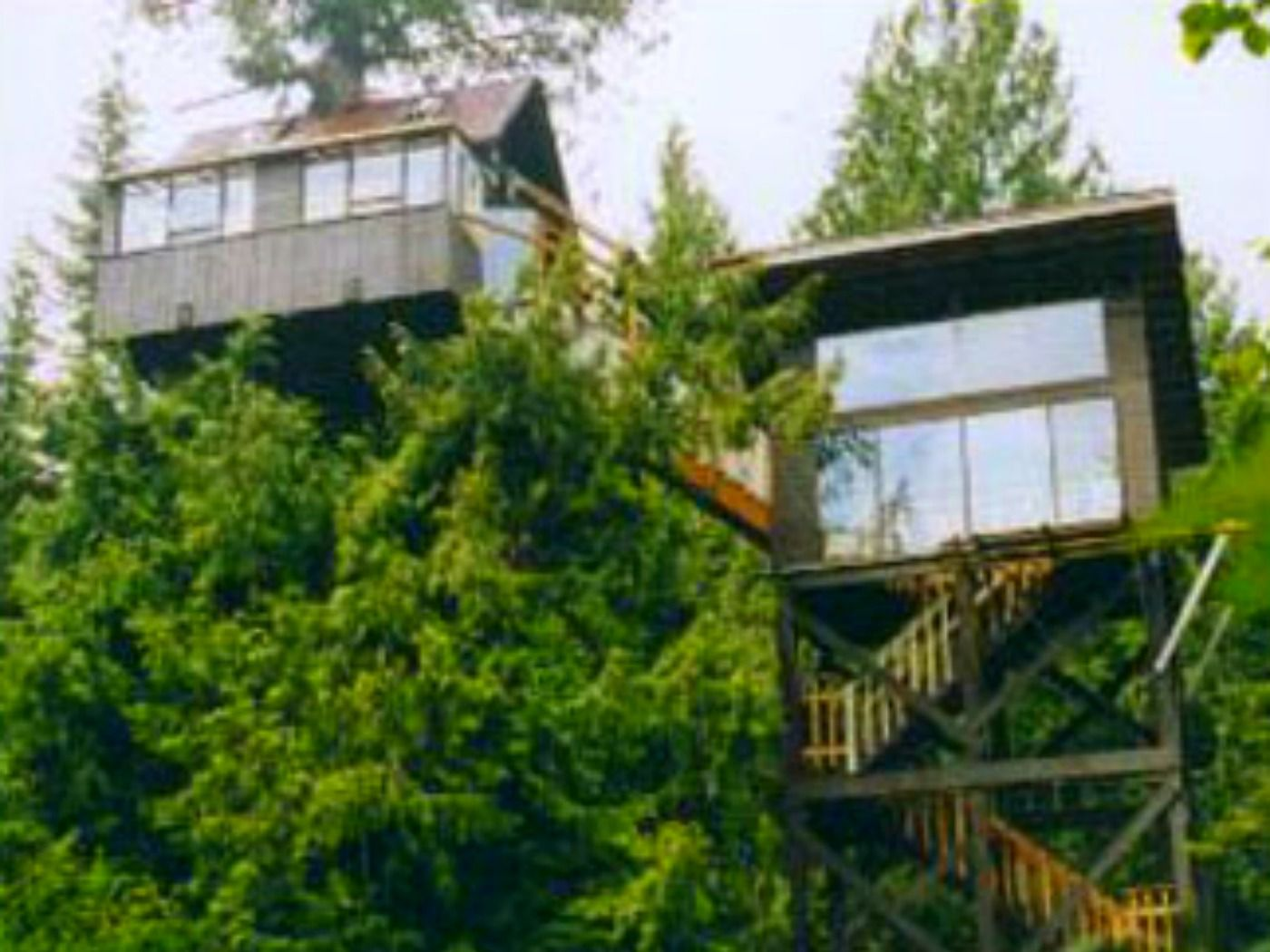Treehouses Where You Can Stay Kid Friendly Lodging