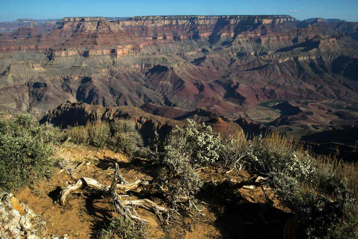 The walls of the Grand Canyon stretch out to the horizon