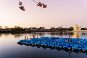 Blue Paddle Boats Moored In Lake By Jefferson Memorial Against Clear Sky During Sunset
