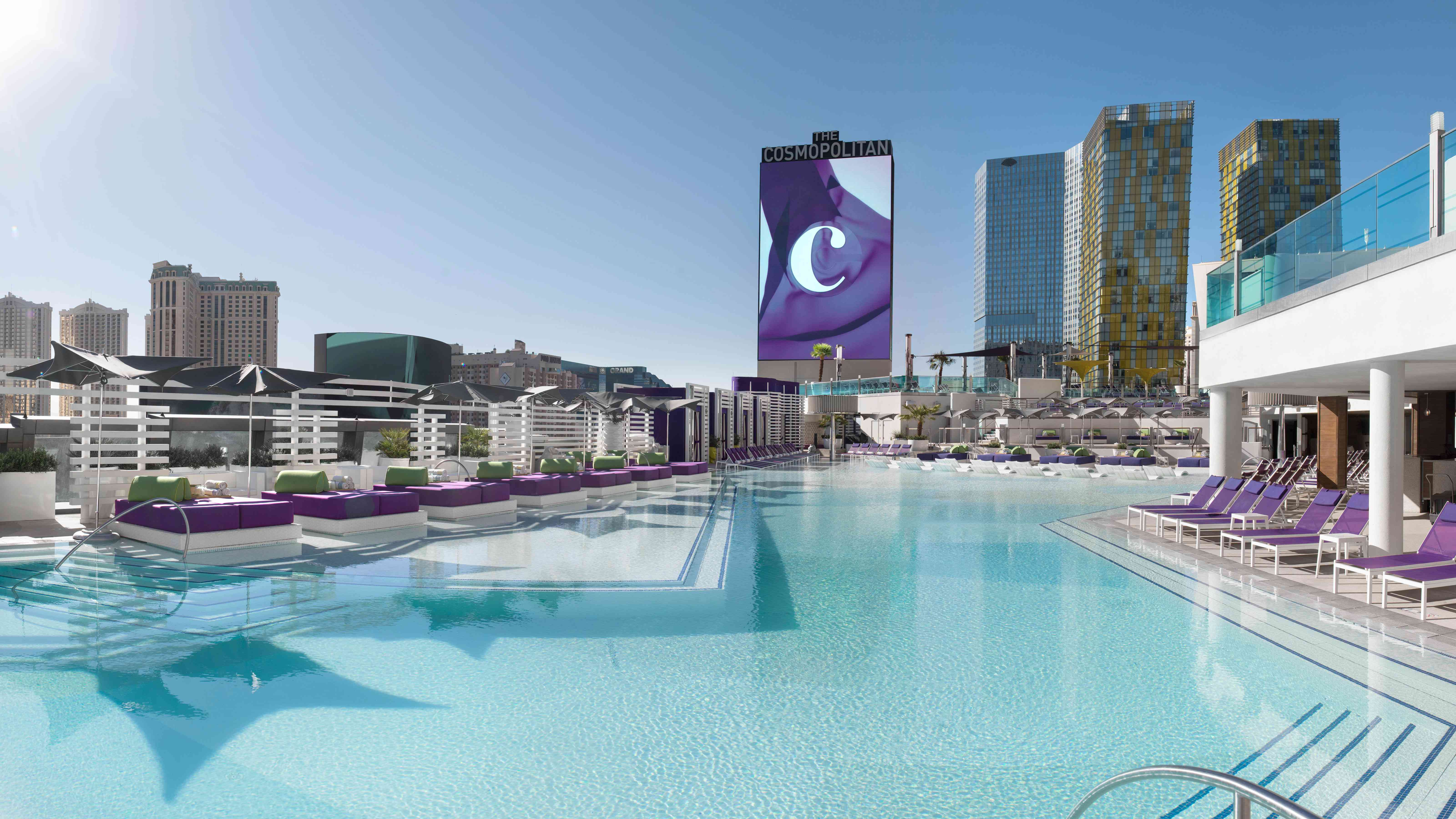 Large plunge pool at the Cosmopolitan of Las Vegas with purple beach chairs and beds