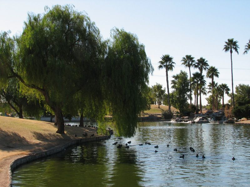 Freestone Park