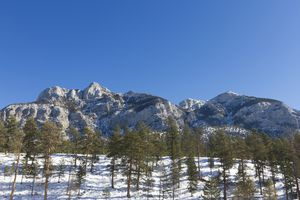 Snowy Lee Canyon