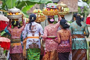 Balinese women in traditional dress carry offerings