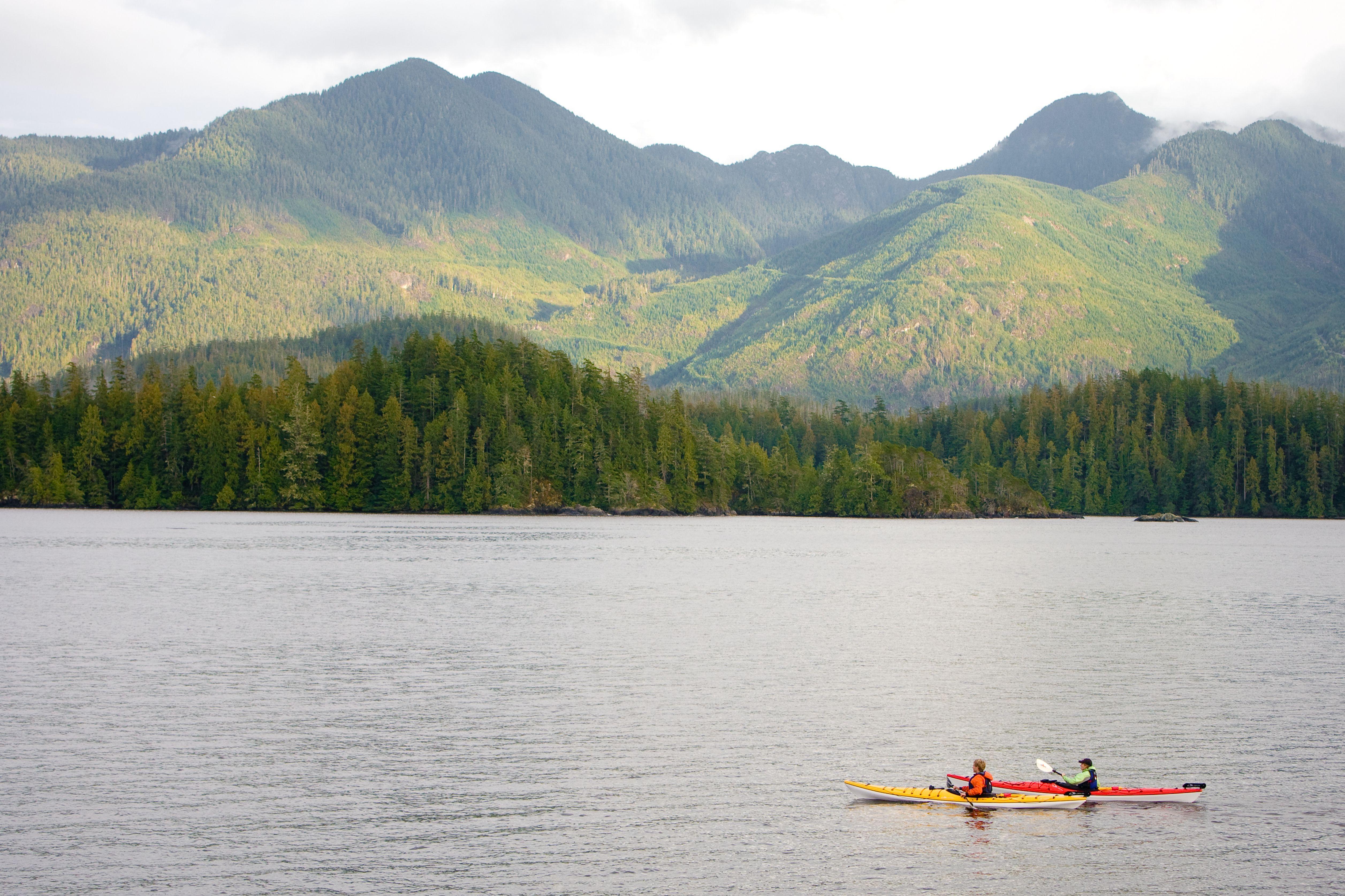 Canada, British Columbia, Vancouver Island, Nootka Sound, Mid adult couple sea kayaking