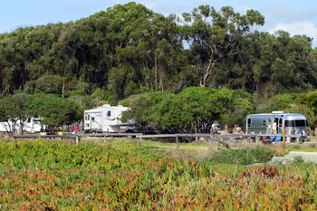 Pismo Beach Camping Campgrounds Rv Parks