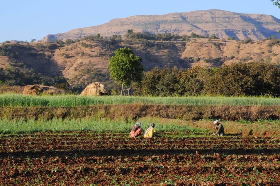 Image result for rural tourism in uttar pradesh