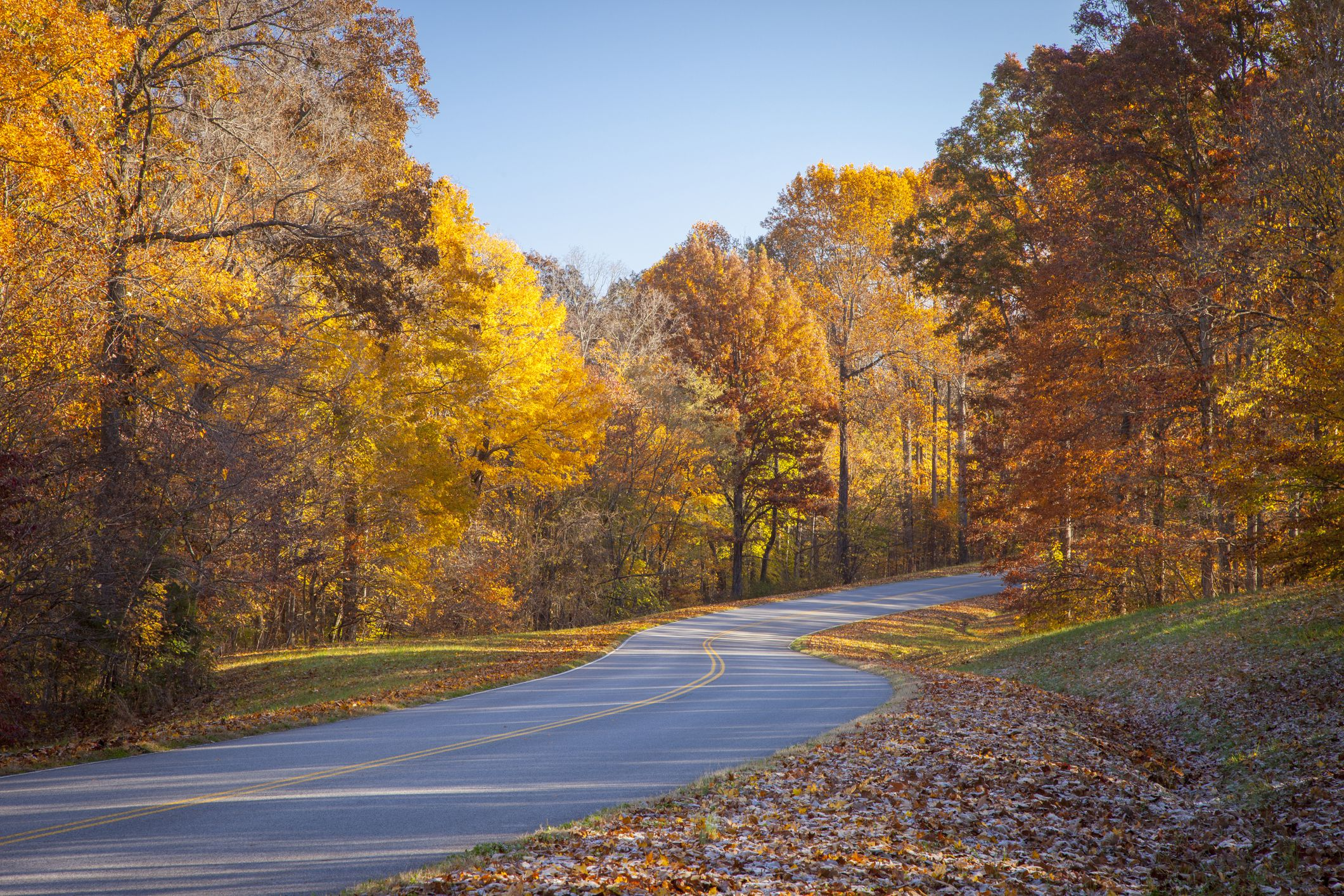 Autumn colors along historic Natchez Trace Parkway, Tennessee, USA