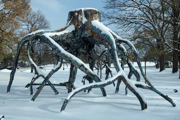 outdoor sculpture of tree roots surrounded by snow at Albright-Knox Art Gallery