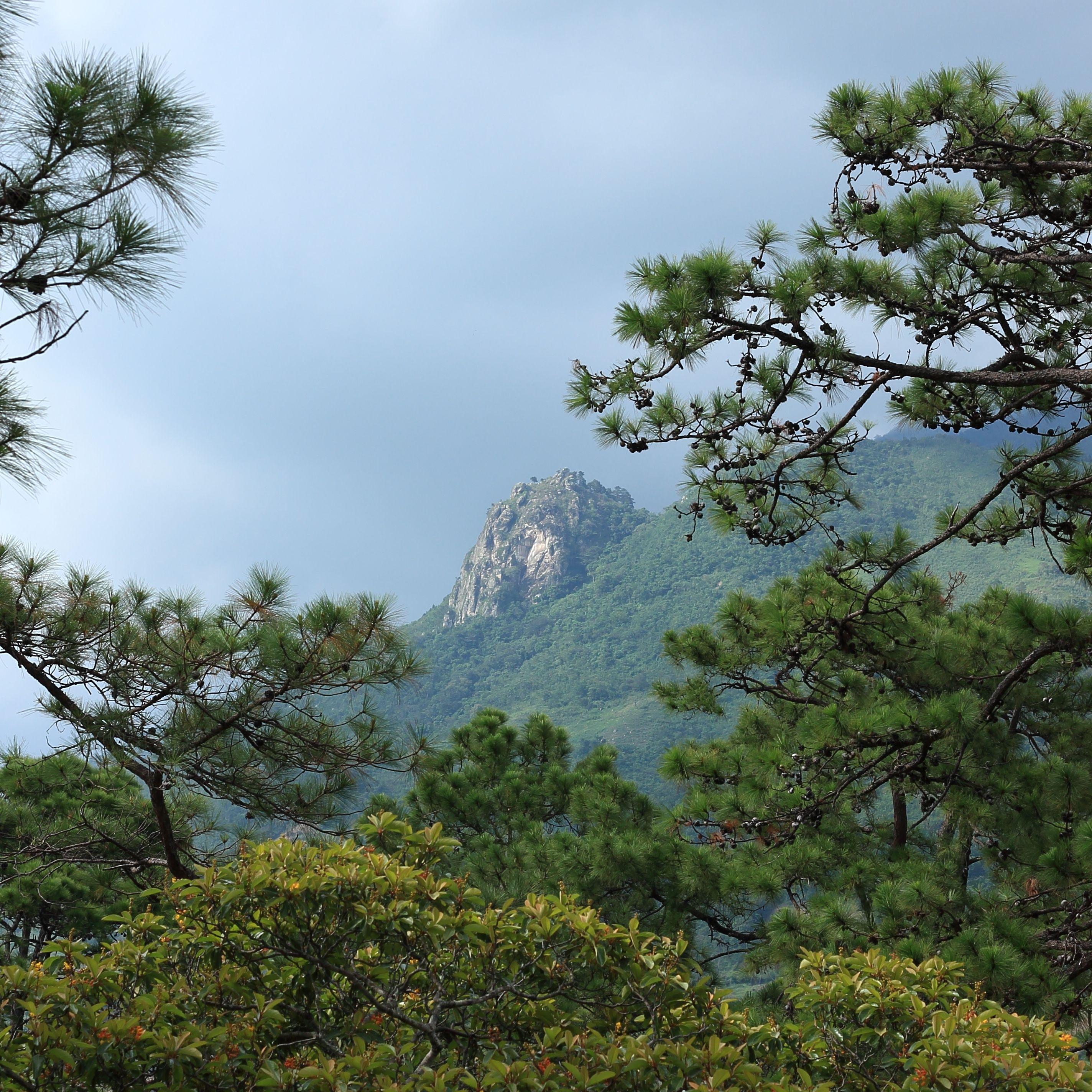 El Pital, highest mountain in El Salvador