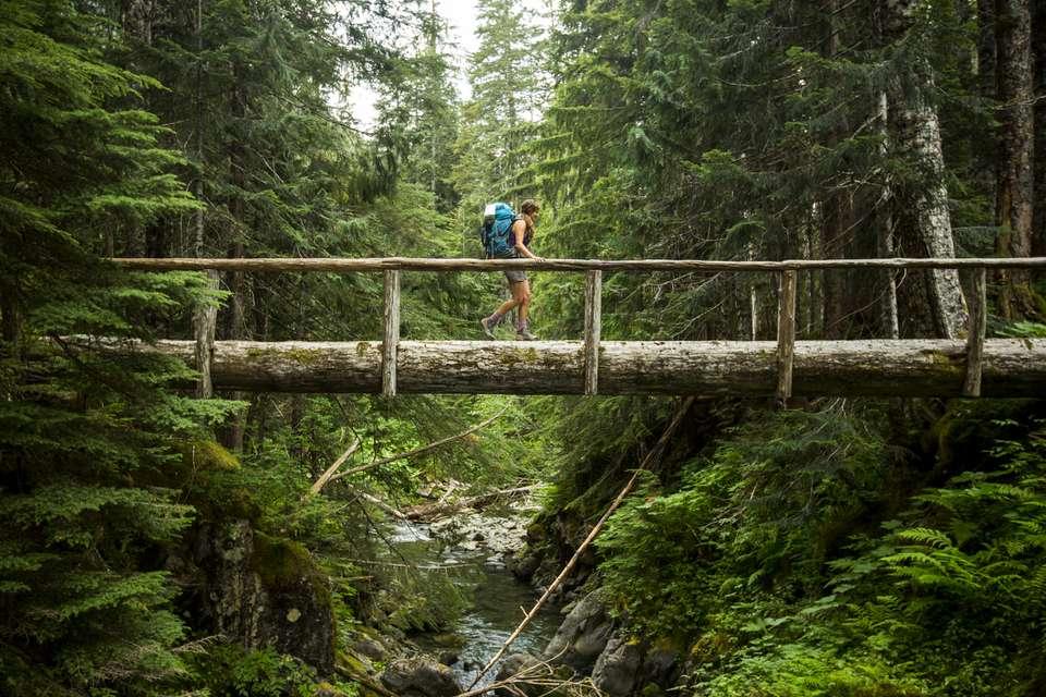 Backpacker walking along a wooden bridge in Olympic National Park