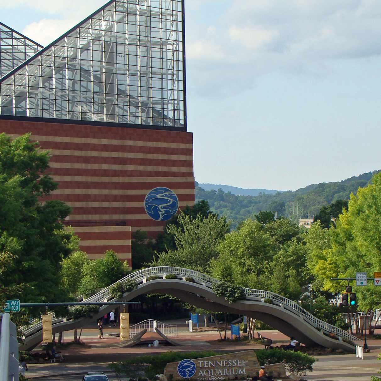 El Acuario de Tennessee es una de las principales atracciones turísticas de Chattanooga