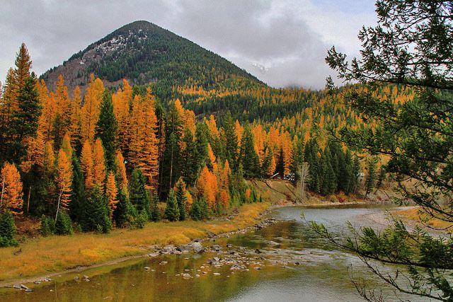 Fall colors at Glacier National Park