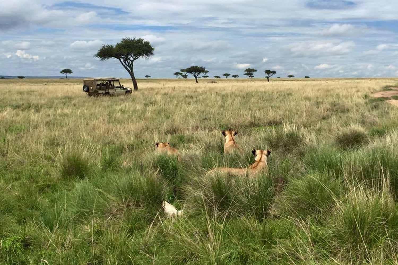 Abercrombie & Kent safari
