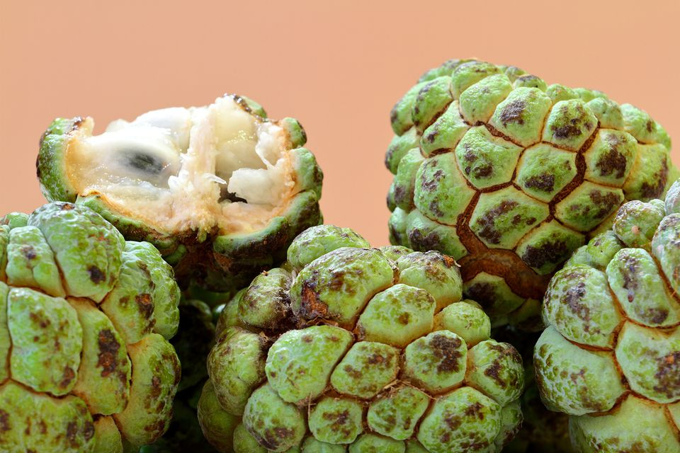 Tropical Fruits From Mexico