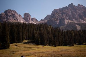 A horse running through a valley in front of mountains in the Dolomites