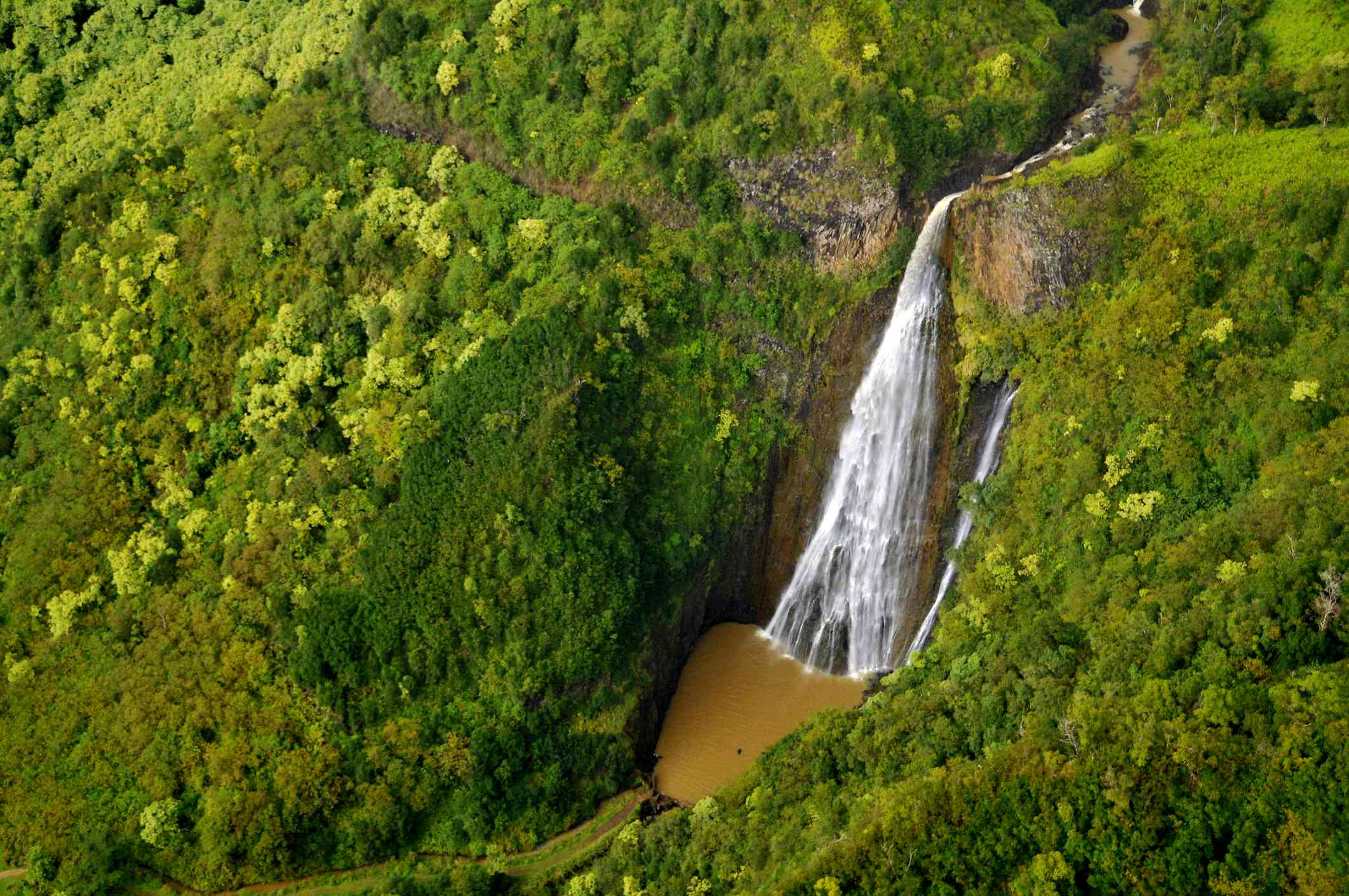 Manawaiopuna Jurassic Falls surrounded by a green forest