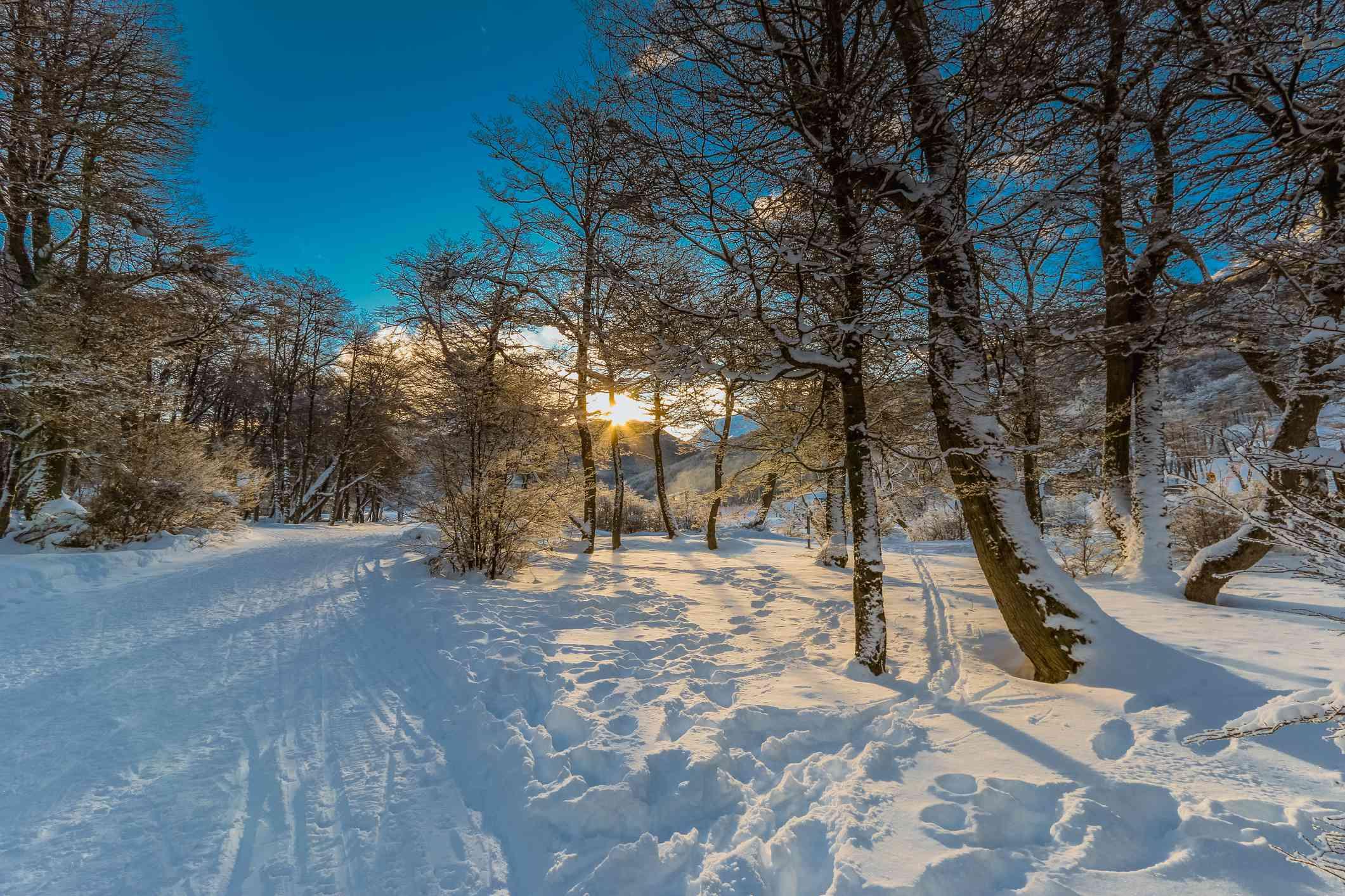 Winter Resort Cerro Castor, Ushuaia