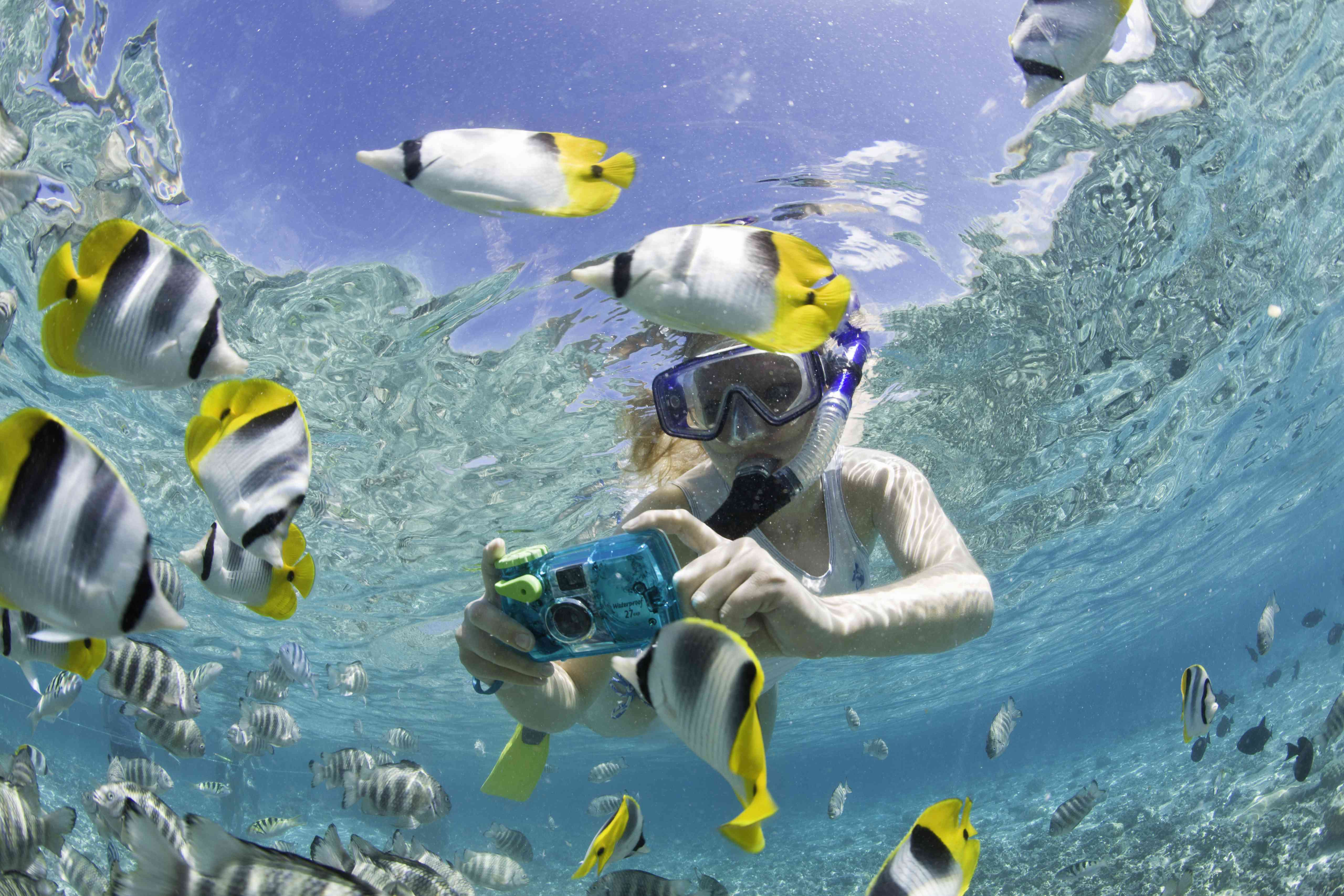 French Polynesia, Bora Bora, Woman taking underwater pictures of colorful reef fish