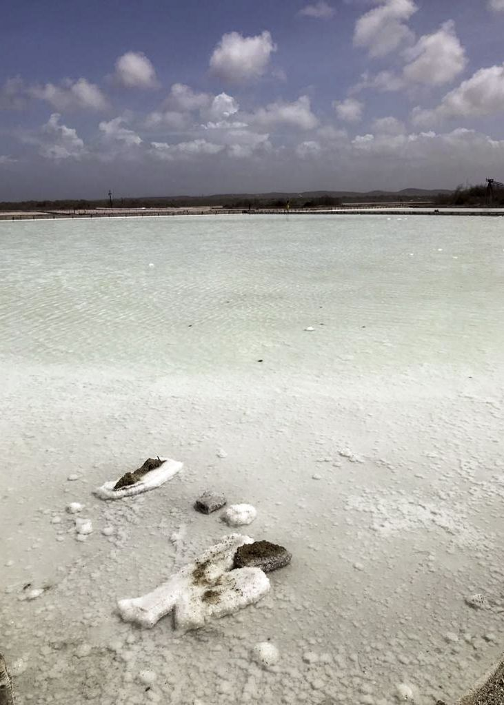 The Salt Flats of Cabo Rojo