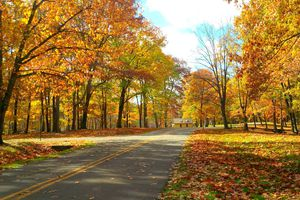 Fall foliage in Raccoon Creek State Park