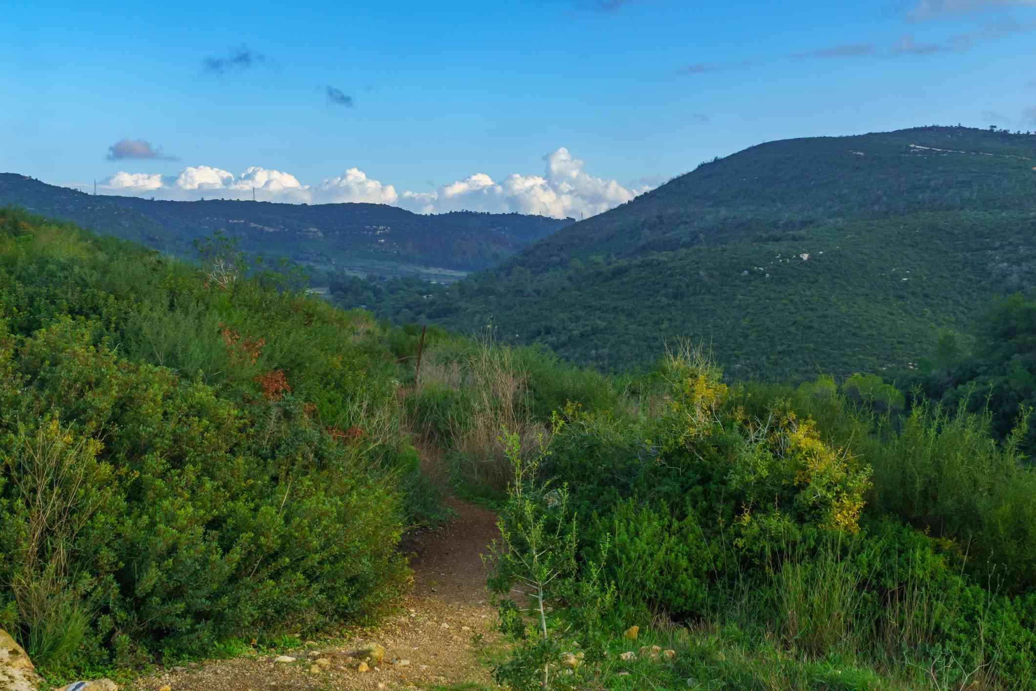 Mount Carmel, Israel